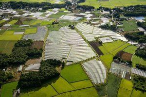Total построит в Японии солнечную электростанцию